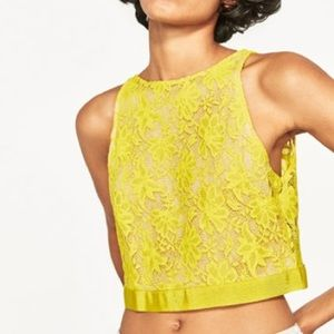 ZARA Lace Open Back Top